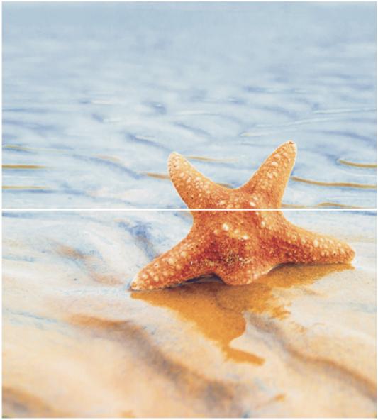 Панно STARFISH 1 50X45 (из 2 шт)