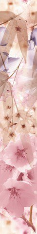 'Бордюр Sakura B300D131 4,5х30