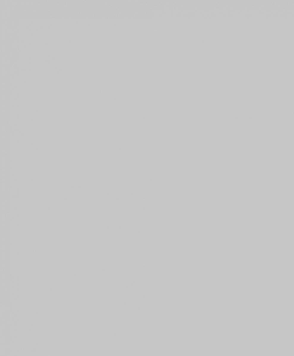 10114-02 Обои 1,06*10 м  флиз горяч тис