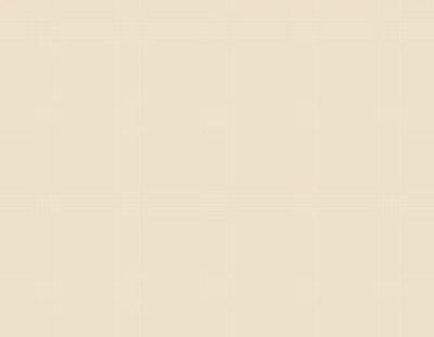 Детали меб. 16х400х2700мм ваниль